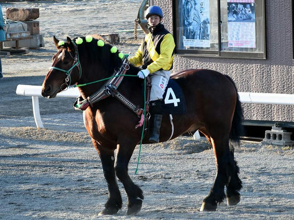 このレース限りで引退する浅田達矢騎手を背に周回するカイシンゲキ号