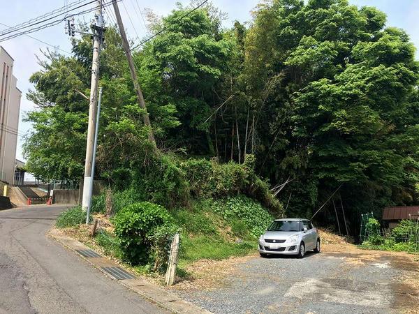 五行川沿いから八幡神社方向を望む