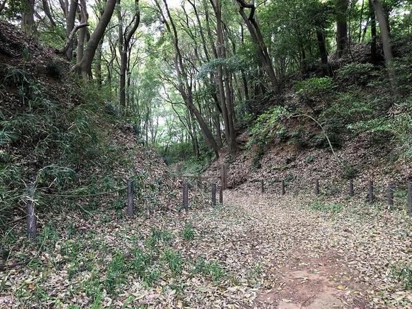 守谷城の堀切