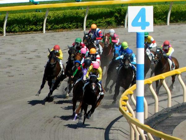 コパノビジン号を先頭に最終コーナーを回る各馬