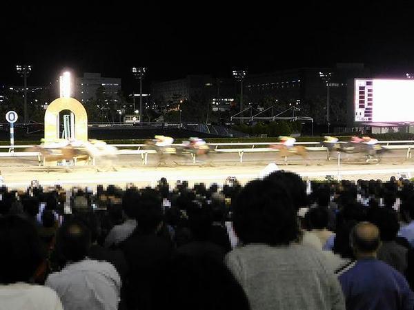 第51回東京盃のゴール
