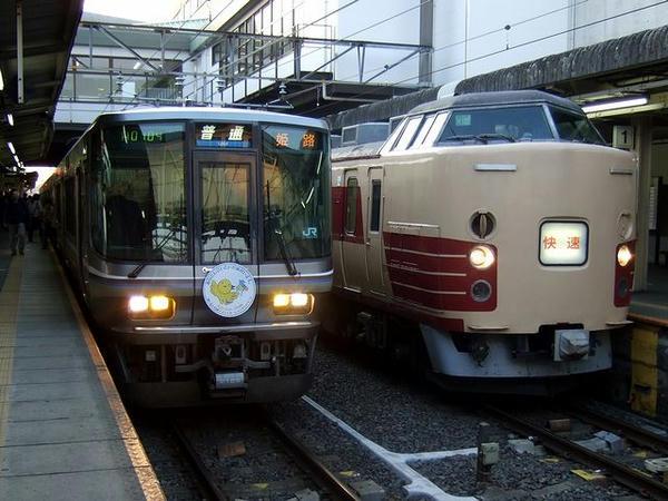 大垣駅に到着したムーンライトながらと並んで発車を待つ203F