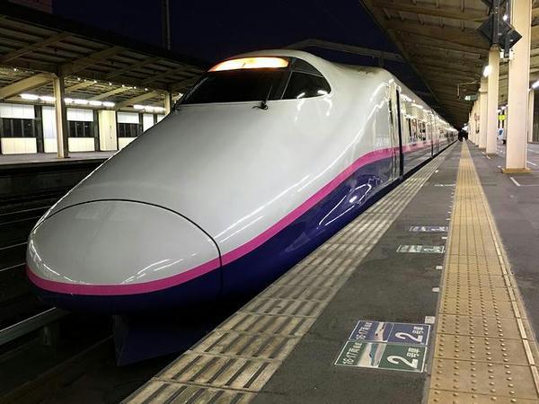 小山駅で発車を待つ東北新幹線なすの252号東京行き