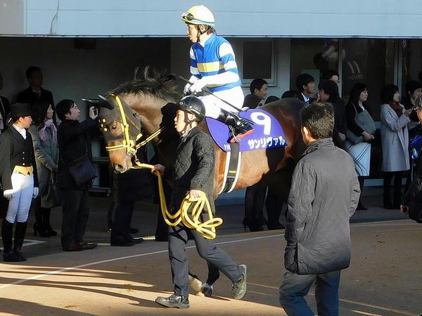 5番人気のサンリヴァル号と田辺裕信騎手
