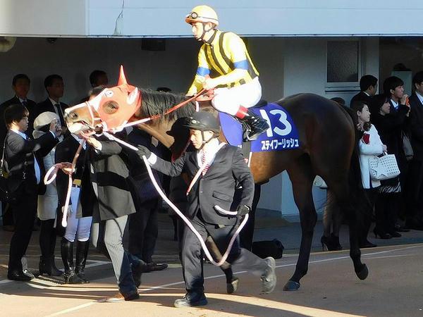8番人気のステイフーリッシュ号と中谷雄太騎手