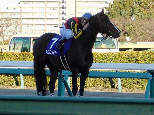 ウイニングラン後に愛馬を称えるC・デムーロ騎手