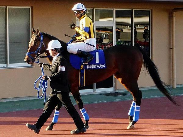 2番人気の(1)ロワジャルダン号と真島大輔騎手