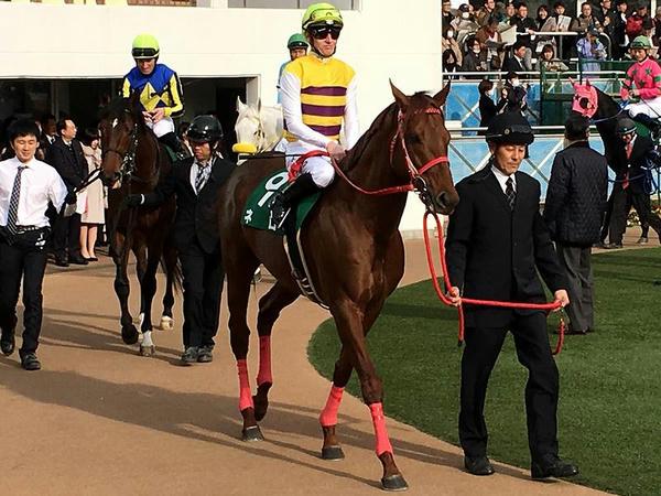 6番人気の(9)ネロ号とフィリップ・ミナリク騎手