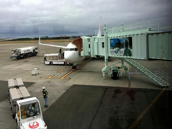 高知龍馬空港に到着したJAL491便