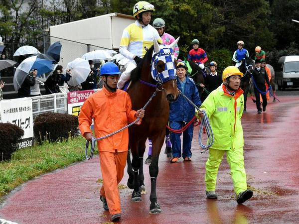 2番人気の(5)ブルドッグボス号(浦和)と岩田康誠騎手(JRA)