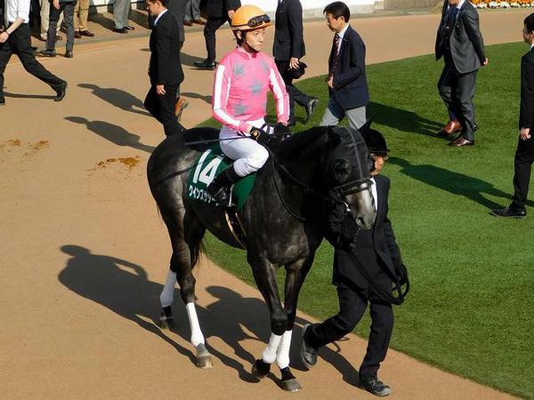 5番人気(14)クインズサターン号(牡5歳)と津村明秀騎手(55.0kg)