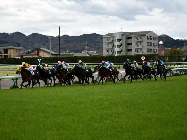 最終コーナーから最後の直線へと向かう各馬