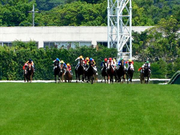 最後の直線の坂を駆け上がる競走馬たち