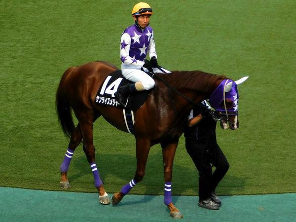 7番人気(14)サンライズメジャー号と大野拓弥騎手