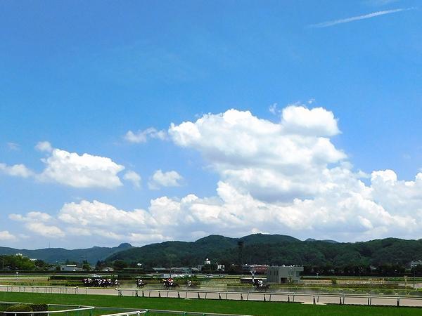夏の雲とダートコースを走る競走馬