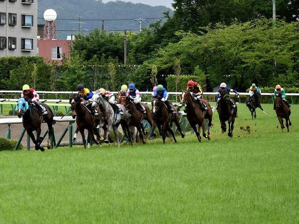 最終コーナーを回る各馬(3)