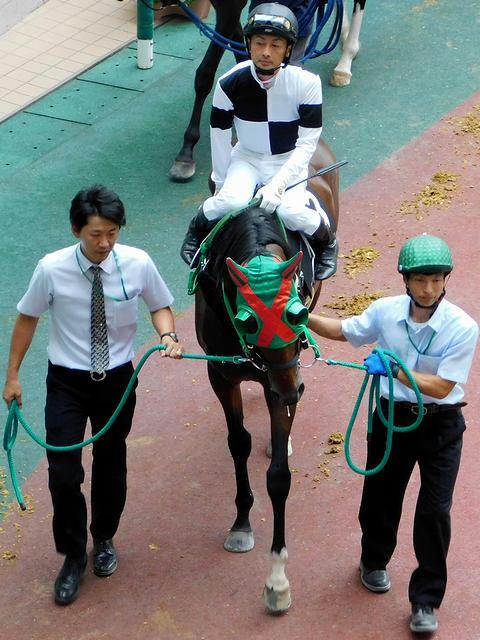 岩手(水沢)所属の菅原俊吏騎手(第11レース)