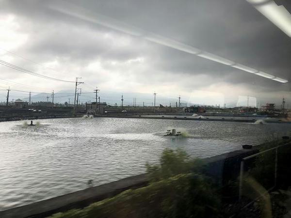 車窓から見た養魚場