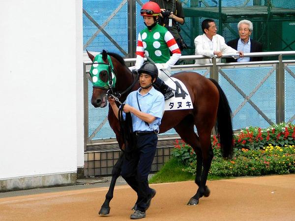 第1レースのパドックを周回するタヌキ号と藤田菜七子騎手