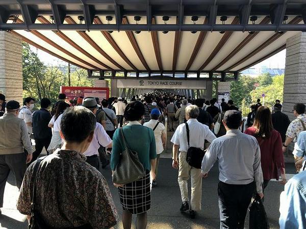 東京競馬場入り口付近