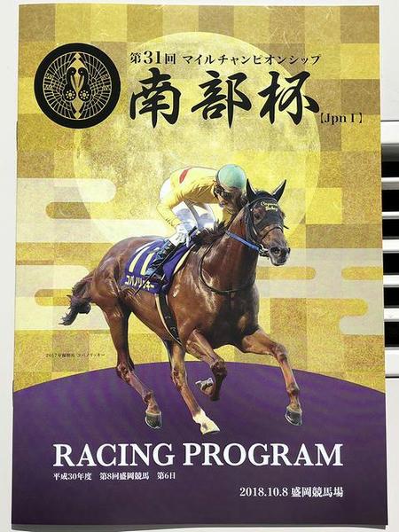 南部杯レーシングプログラム