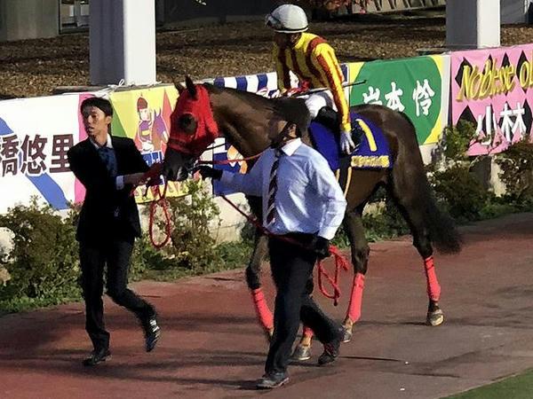 3番人気の(1)ノンコノユメ号と内田博幸騎手