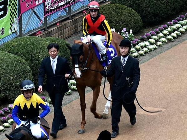 (5)パフォーマプロミス号とC・デムーロ騎手