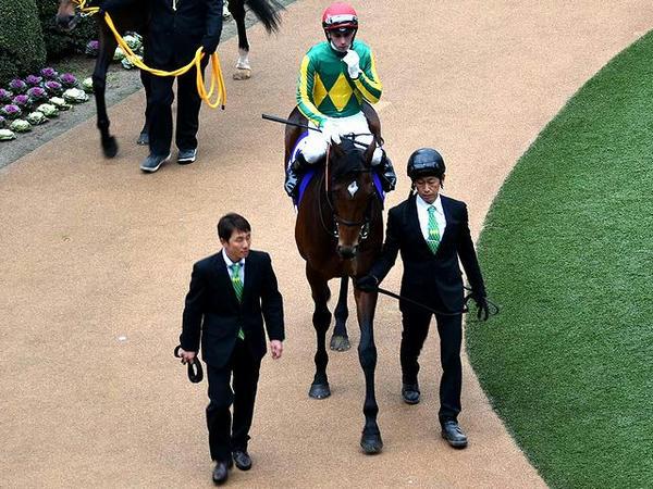 (6)サトノダイヤモンド号とB・アブドゥラ騎手