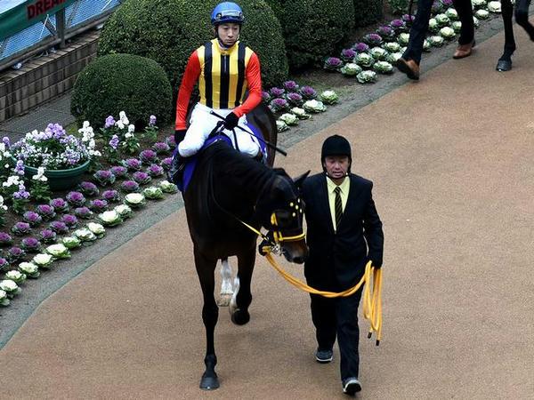 (7)サウンズオブアーズ号と藤岡佑介騎手