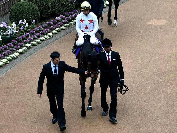 (10)ミッキースワロー号と横山典弘騎手