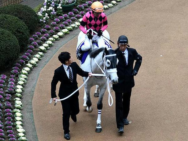 (13)スマートレイアー号と戸崎圭太騎手