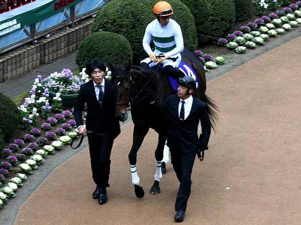 (14)キセキ号と川田将雅騎手