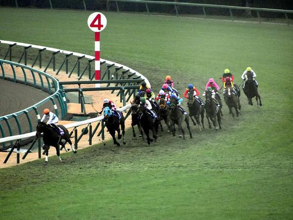 最終コーナーを回る各馬