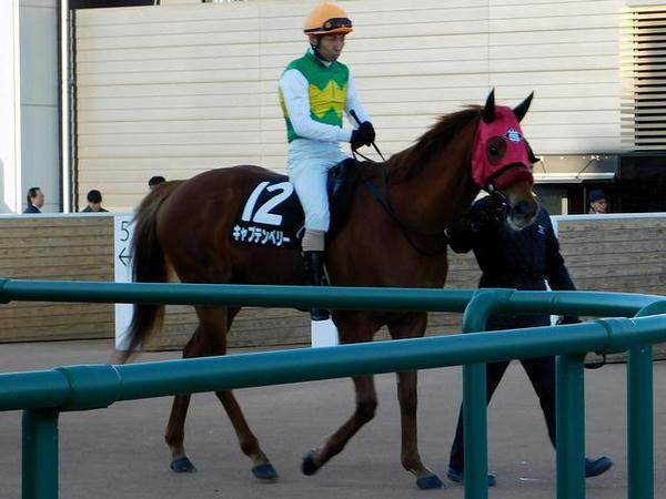 馬場へと向かう(12)キャプテンペリー号と大野拓弥騎手