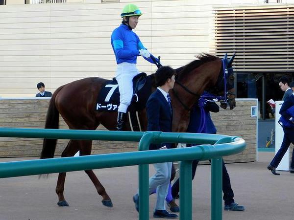 馬場へと向かう(7)ドーヴァー号と田辺裕信騎手