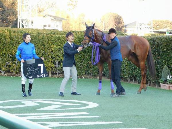 優勝したドーヴァー号と田辺裕信騎手