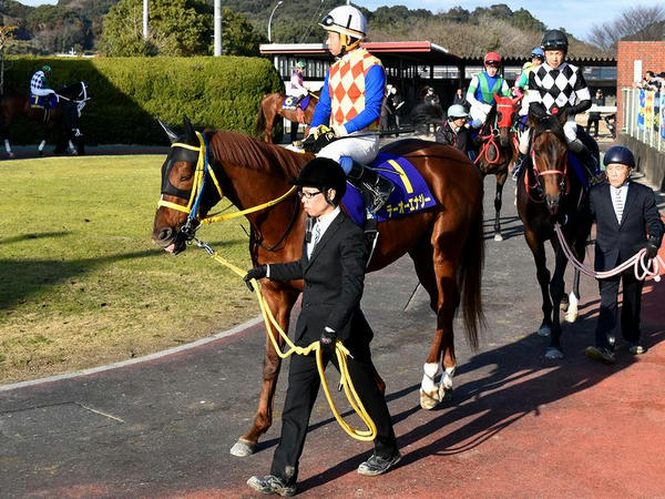 (1)テーオーエナジー号(牡4・JRA)と岩田康誠騎手(JRA)