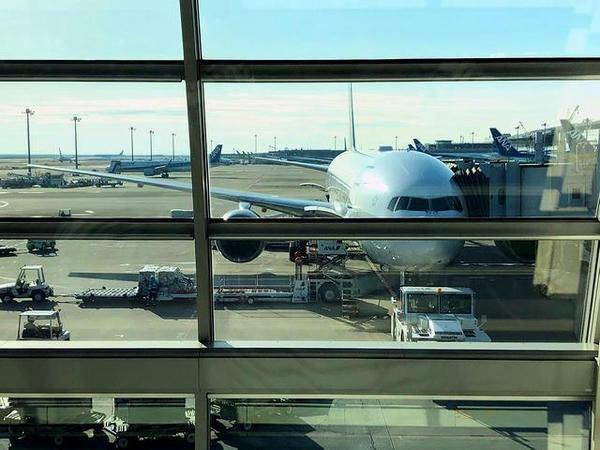 羽田空港に駐機中のANA245便