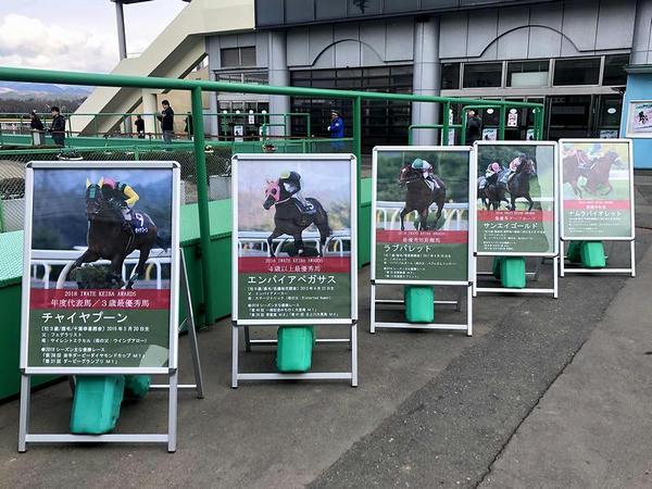 2018年度代表馬等パネル展示