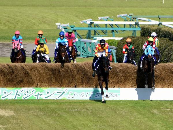 大竹柵障害を飛越するオジュウチョウサン号他各馬