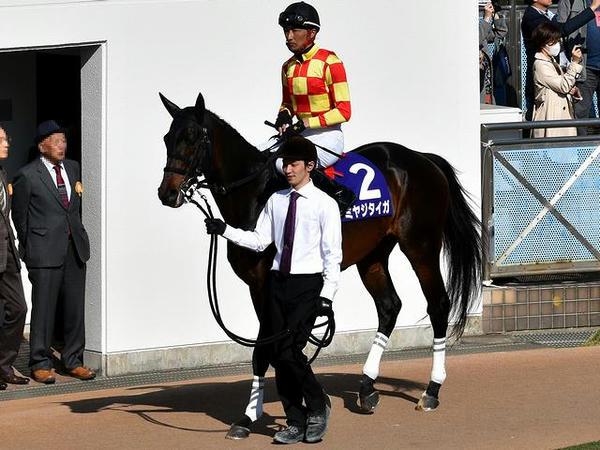 (2)ミヤジタイガ号(牡9・西谷誠騎手)