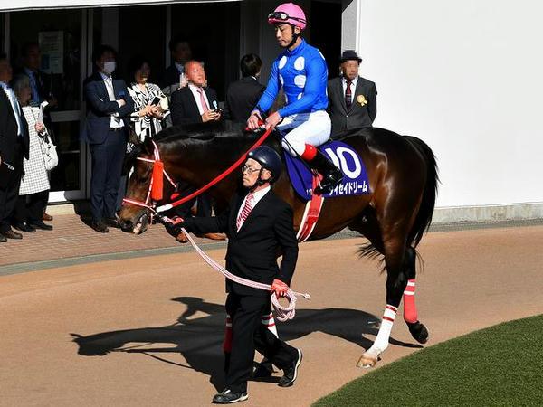 (10)タイセイドリーム号(牡9・平沢健治騎手)