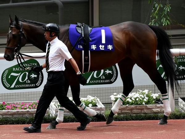 1番人気の(1)キセキ号(牡5歳) ※川田騎手が跨った写真は撮れず