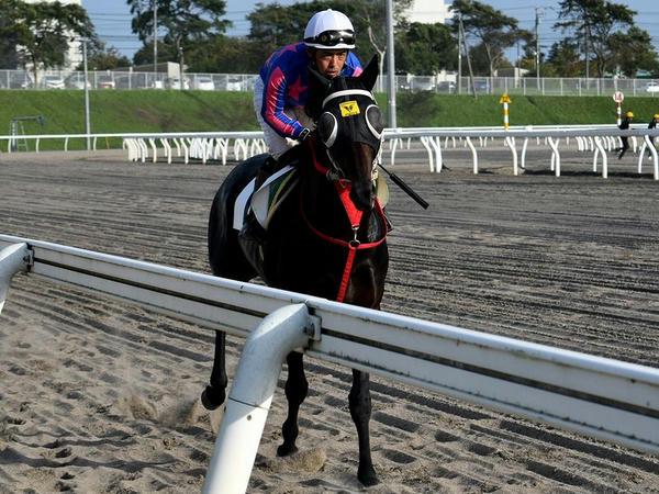 第4レースの返し馬