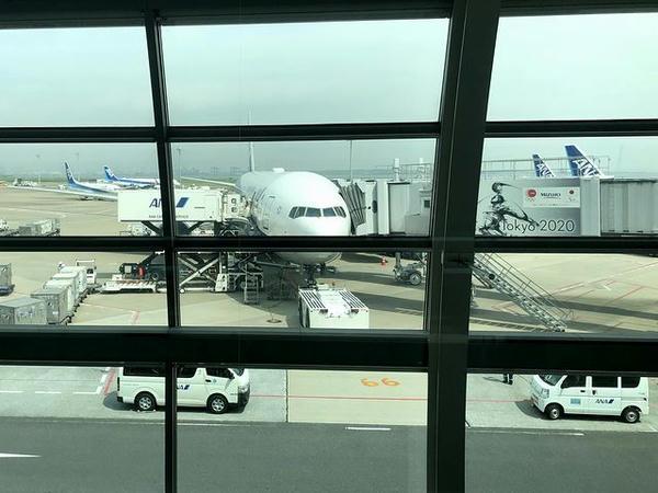 羽田空港に駐機中の新千歳空港行きANA061便