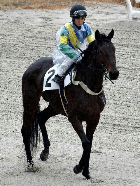 第3レースの馬場入りする関本騎手