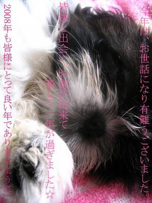 2007-myu-12-29.jpg