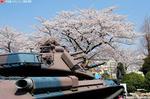 花より戦車?
