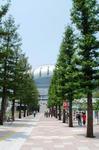 大阪ドーム-6