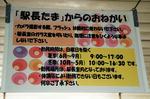 貴志駅-11